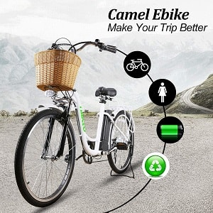 NAKTO 26 250W Cargo Electric Bicycle Sporting Shimano 6 Speed Gear EBike Brushless Gear Motor with Removable Waterproof