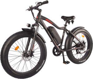 The DJ 750W 48V 13Ah Fat Bike